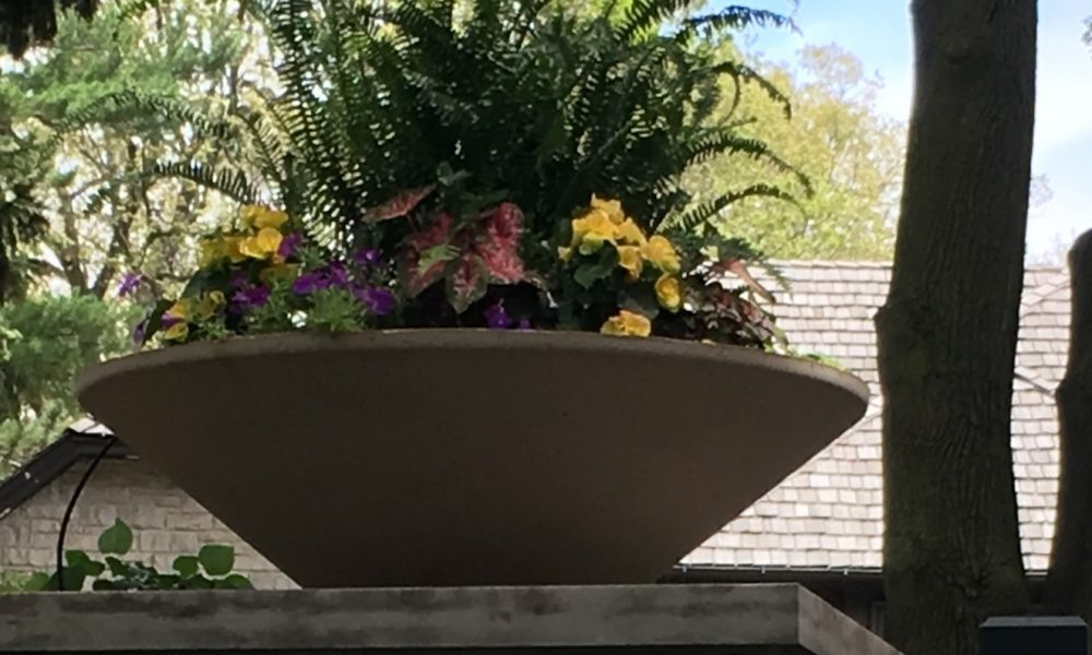 big bowl flower planter