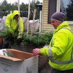 seasonal-planting-for-your-team-green-thumb-two-men-planting-oakville