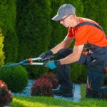 Garden Maintenance FAQs- Green Thumb Landscaping