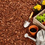 To Mulch Or Not To Mulch? Mulching Tips- Mulch & Planting tools with spring plants