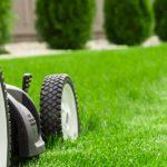 Ladies & Gentlemen…Start Your Engines!- Lawn mower on green lawn