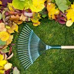 The Benefits of Seasonal Cleanup - Rake on a wooden stick and Colored autumn foliage.
