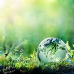 2020: The Year To Save The Planet - Green Thumb Landscaping