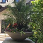 Don't wait! | Beautiful planter!