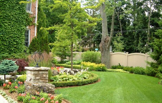 maintained-front-yard-dec-2018-blog-1